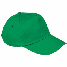 5-panel cap 'New York'  color green