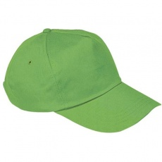 5-panel cap 'New York'  color light green